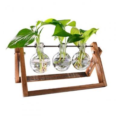 Soporte hidropónico para plantas