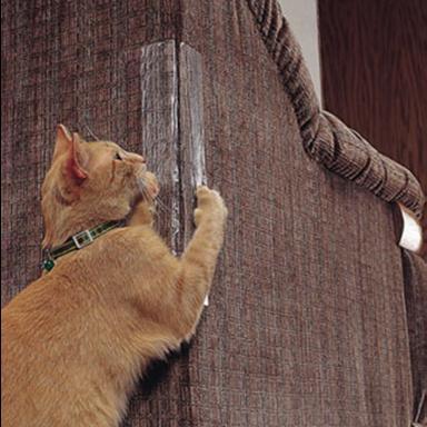 Gomaomi auto-adhesivo gato que rasca muebles Protector sofá Protector para muebles de almeja